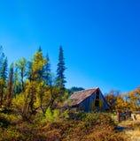 Autumn Barn abandonado imagem de stock