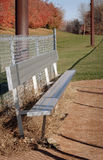 Autumn Baseball field Bench. Baseball field bench with autumn trees in the background royalty free stock images