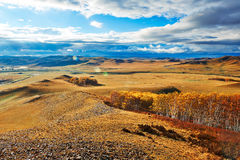 Autumn Bashang grassland cloudscape Royalty Free Stock Image