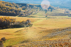 Autumn Bashang grassland hillside Stock Photos