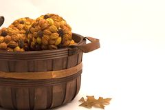Autumn Basket. A basket filled with nature's cast offs from autumn makes a nice fall table centerpiece Royalty Free Stock Image