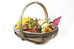 Autumn basket Royalty Free Stock Photos