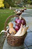 Autumn basket Stock Photos