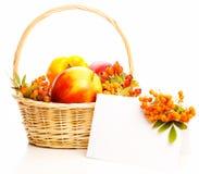 Autumn Basket Royalty Free Stock Photos