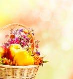 Autumn basket Royalty Free Stock Images