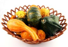 Autumn Basket. A basket of autumn gourds and mums Royalty Free Stock Image