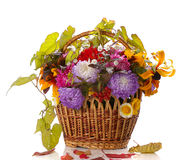 Autumn basket Royalty Free Stock Image