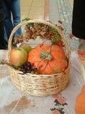 Autumn Basket Fotografia Stock Libera da Diritti