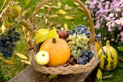 Autumn basket Royalty Free Stock Photography