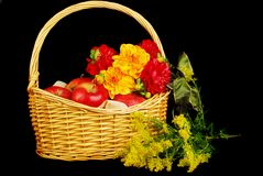 Autumn basket with apples and flowers Royalty Free Stock Images
