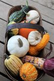 Autumn Basket Arrangement foto de stock royalty free