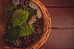 Autumn basket. Stock Images