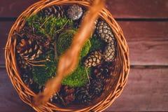 Autumn basket. Royalty Free Stock Photography