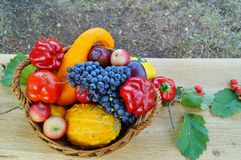 Autumn basket full of fruits and vegetables Royalty Free Stock Images