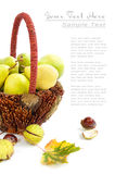Autumn basket with pears and chestnuts Royalty Free Stock Image