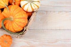 Autumn Basket Still Life Royalty Free Stock Photo