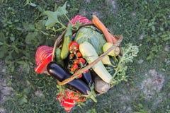 Autumn basket Royalty Free Stock Photography