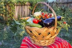 Autumn basket Stock Image