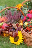 Autumn baskets Royalty Free Stock Image