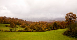 Autumn at Basque Country 1 Royalty Free Stock Photography