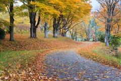 Autumn Bass Lake Blue Ridge Parkway North Carolina royaltyfri bild