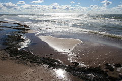 Autumn beach. Seaside near Pape, Latvia Royalty Free Stock Image
