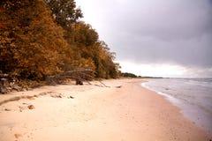 Autumn beach Royalty Free Stock Photo