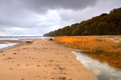 Autumn beach Royalty Free Stock Photography