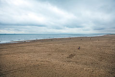 Autumn Beach in the Hague, Netherlands. Royalty Free Stock Image