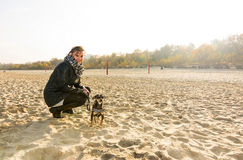 Autumn beach portrait with dog Stock Photography