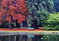 Autumn beacon hill park stock photography