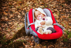 Autumn beautiful baby sleeping. Royalty Free Stock Photos