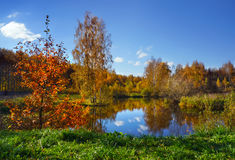 Autumn, beautiful day in fall season. Beautiful nature landscape, golden trees in sunny day in fall season stock image