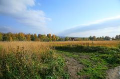 Autumn beautiful field  Royalty Free Stock Photography