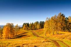 Beautiful autumn landscape. Fall season Stock Image