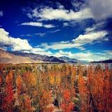 Autumn. The beautiful landscape of Tibet in autumn Stock Image