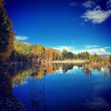 Autumn. The beautiful landscape of Tibet in autumn Royalty Free Stock Photography
