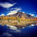 Autumn. The beautiful landscape of Tibet in autumn stock photography