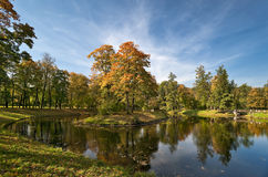 Autumn in the beautiful park. Autumn trees and pond in the beautiful park Royalty Free Stock Images