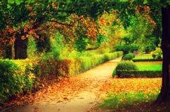 Autumn beautiful park Stock Image