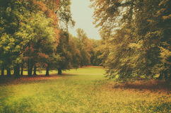 Autumn beautiful park Royalty Free Stock Images