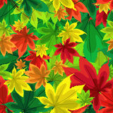 Autumn beautiful seamless pattern. Red, yellow, green leaves of trees. Bright. Royalty Free Stock Photos
