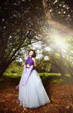 Autumn beauty Royalty Free Stock Photos