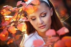 Autumn beauty Stock Photography
