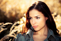 Autumn beauty. Young brunette woman  portrait in autumn field Royalty Free Stock Image