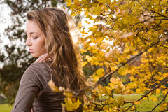 Autumn beauty Royalty Free Stock Photography