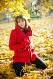 Autumn Beauty Stock Images