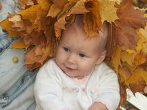 Autumn beauty. Little girl in diadem from autumn maple leaves Stock Images