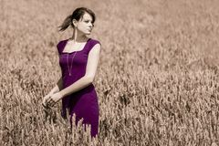 Autumn beauty in cornfield with purple dress Stock Image