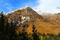 The autumn beauty of Four Girls Mountain. Four Girls Mountain is reputed as the Oriental Alps, located in Xiaojin County of Aba Tibetan and Qiang Autonomous Royalty Free Stock Photo